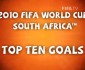 Top 10 Goals of The 2010 FIFA World Cup in South Africa